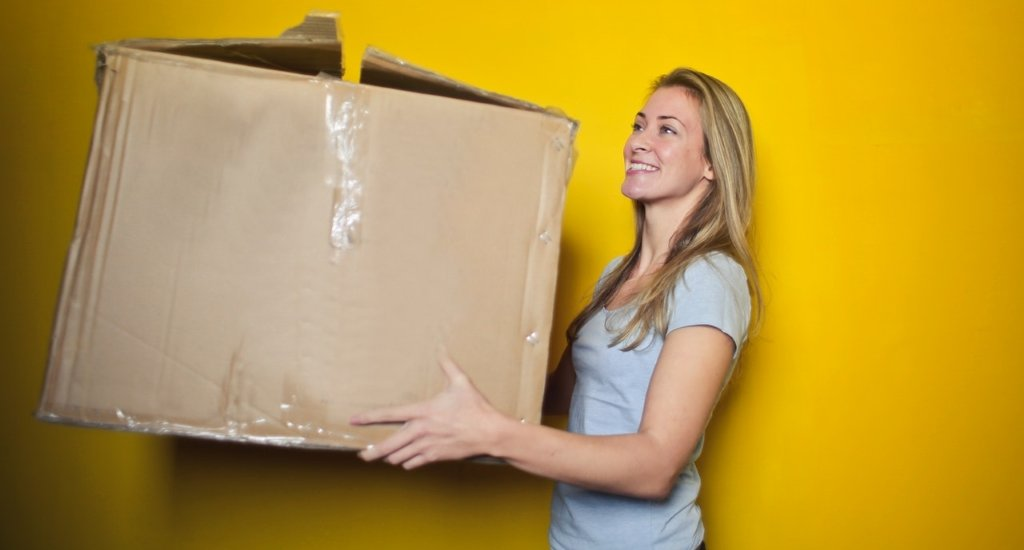 what is the difference between ems and dhl shipping